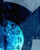 синий окрас