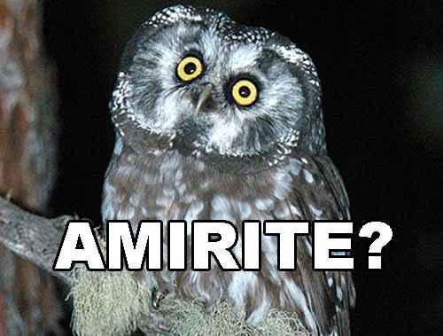 Amirite?