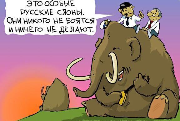 Россия – родина слонов!